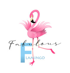 f is for flamingo alphabet teaching english card vector image
