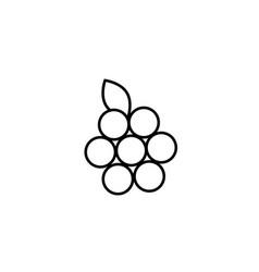 raspberry icon vector image