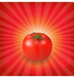 Sunburst Background With Red Tomato vector