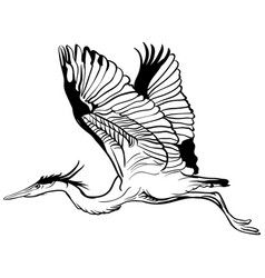 tattoo sketch flying stork vector image vector image