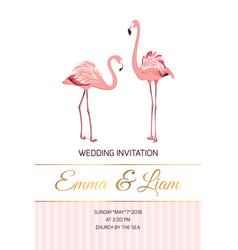 exotic pink flamingo birds couple wedding invite vector image vector image