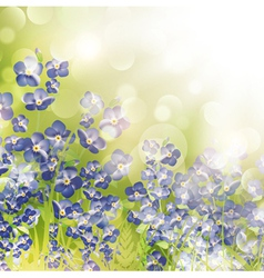 Summer or Spring Meadow vector image