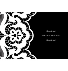 White lace vector