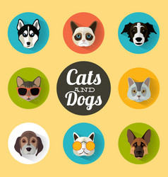 Dog and cats portraits with flat design vector