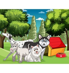 Many types of dogs in the park vector