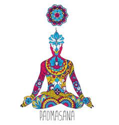 Padmasana or lotus position vector