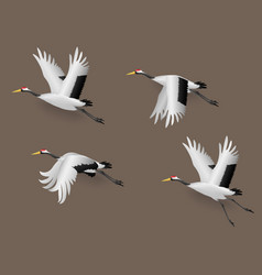set japanese crane birds flying vector image