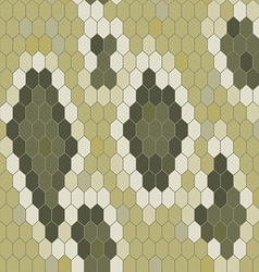 Snake skin texture Seamless pattern python vector image