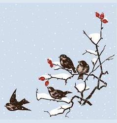 Sparrows in december vector