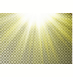 sun ray light on top isolated on checkered backgro vector image