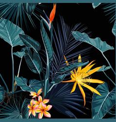 Tropical vintage palm monstera plant strelitzi vector