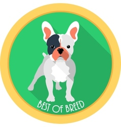 dog best of breed medal icon flat design vector image vector image