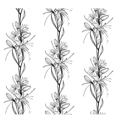 Lily Flowers Outline Seamless Pattern vector image