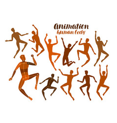 Animation human body anatomy people in motion vector