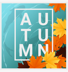 Hello autumn background with maple leaves vector
