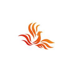 Rising phoenix logo vector