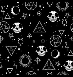 Seamless depicting magic symbols and skulls vector