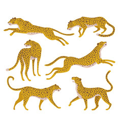 set abstract silhouettes leopards vector image