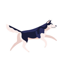 active cartoon friendly husky dog breed vector image