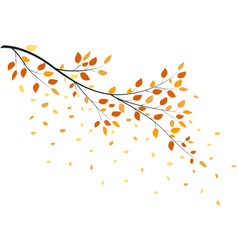 Autumn tree with yellow leaves vector