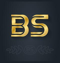 B and s - initials or golden logo bs - metallic vector