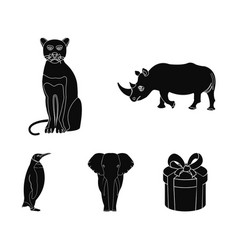 black rhinoceros panther wild cat african animal vector image