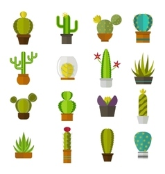 Cute cartoon cactus collection flat nature vector image
