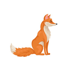 Flat icon of sitting red fox side view vector