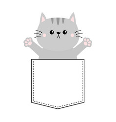 Gray cat in pocket holding hands up give me vector