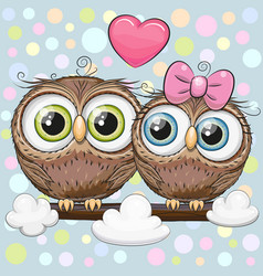 Greeting card with two cute cartoon owls vector