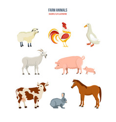 Set of different farm animals on white background vector
