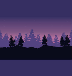 silhouette of spruce scenery at night vector image