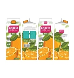 Template packaging design orange juice vector