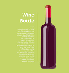 wine bottle green poster on vector image