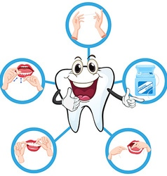 Clean tooth and process of flossing vector image vector image