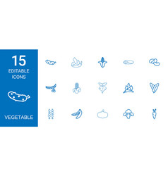 15 vegetable icons vector