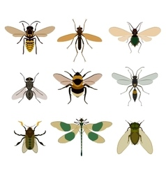 Bug icon set isolated on white vector image