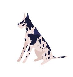 cute cartoon german dog sitting flat vector image
