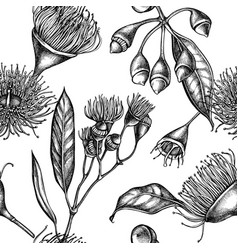 seamless pattern with black and white eucalyptus vector image