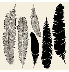Beautiful Vintage Feathers vector image vector image