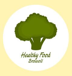 broccoli healthy food concept vector image