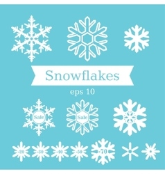 Set of white flat snowflakes on a blue background vector image