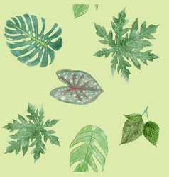 botanical background of green leaves tropical vector image