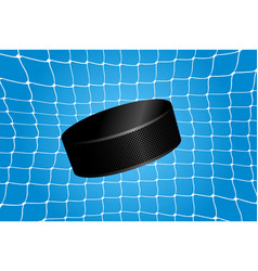 Goal - a hockey puck in the net vector