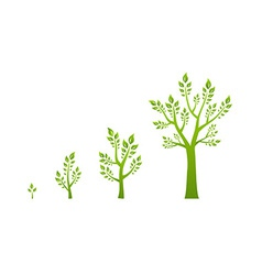 Green tree growth eco concept vector