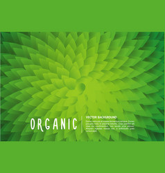 Organic background with green leaf vector