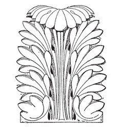 Roman leaf is shown as a capital of a column in vector