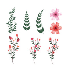 set tropical flowers with exotic branches leaves vector image