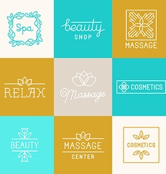 Spa and beauty logos vector image