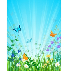 Sunny meadow vertical version vector